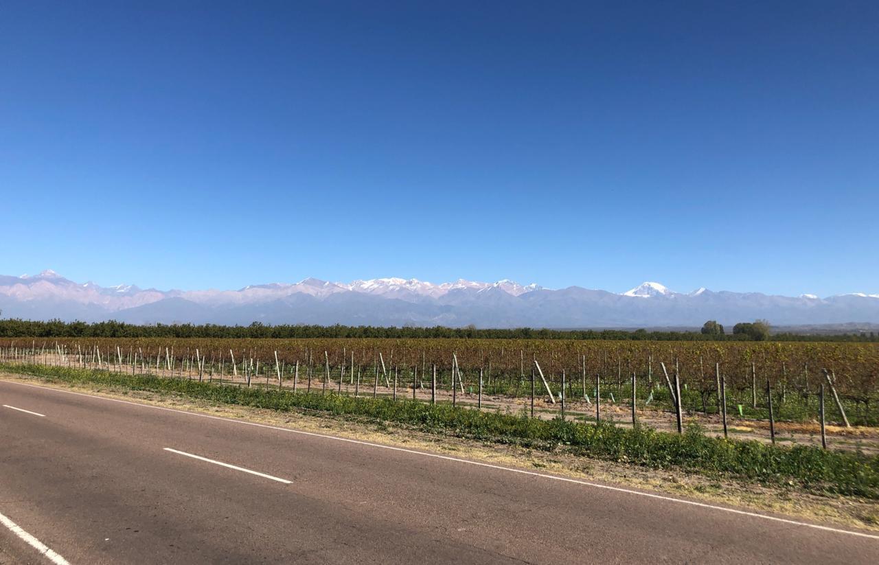Mendoza otoño 2021