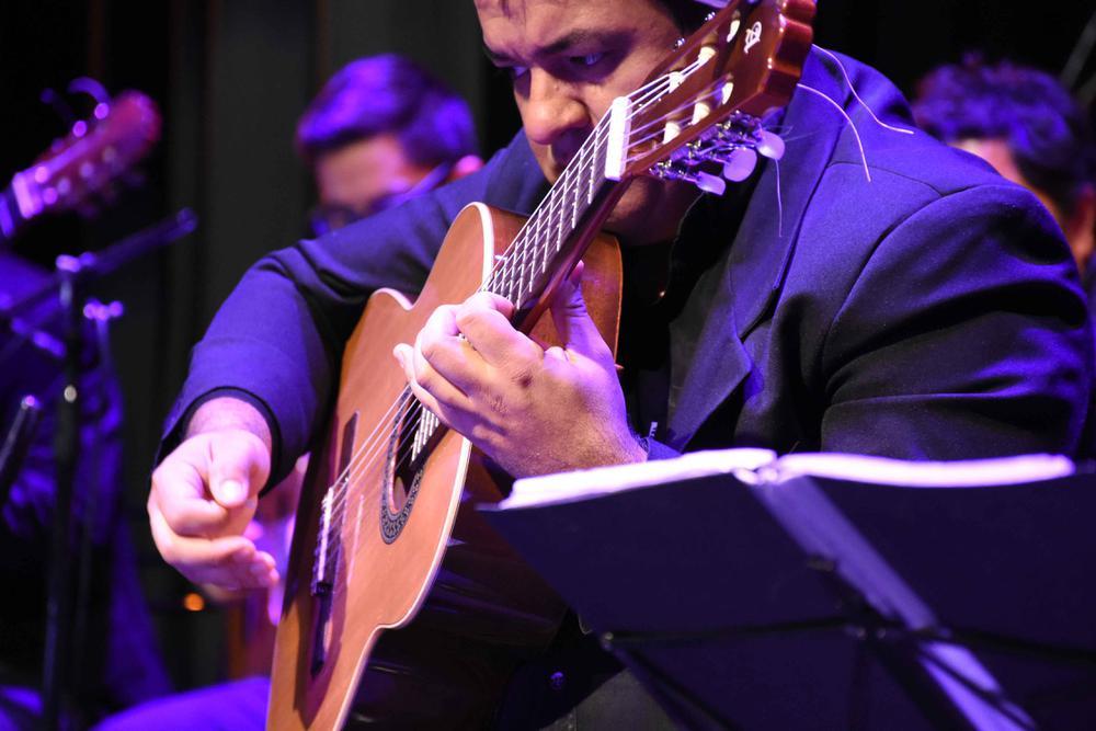 Orquesta Municipal de Guitarras Tito Francia