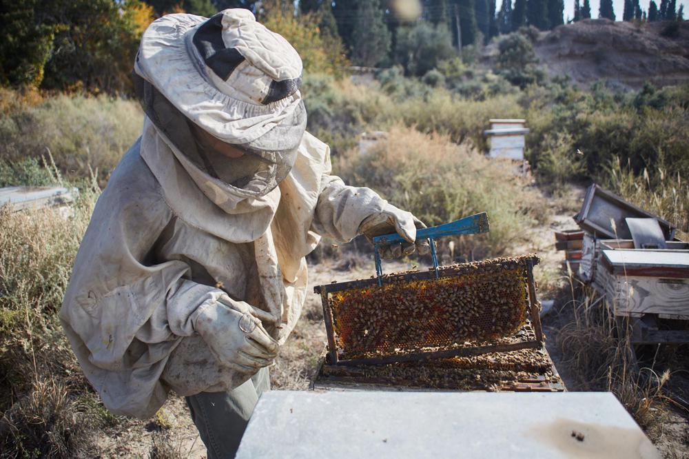 Las Heras, semana de la miel