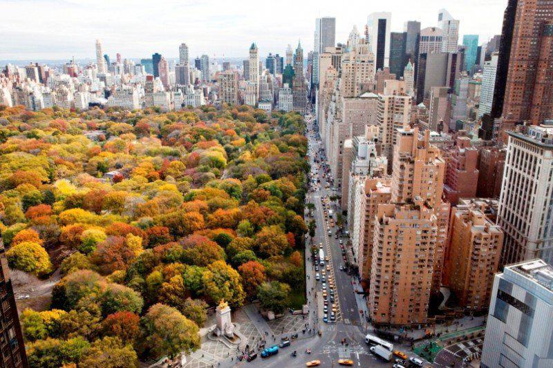 Nueva-york-C-Park